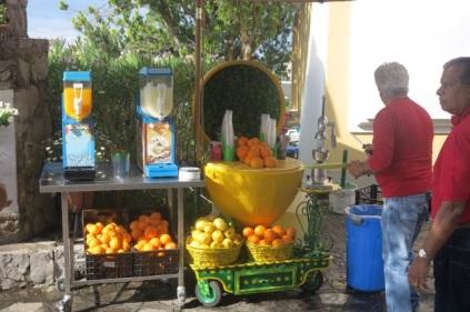 1.1464984910.amalfi-coast-tour---lemon-vendor