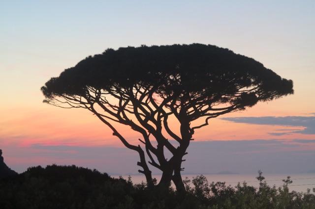 1.1465576417.capri---sun-setting