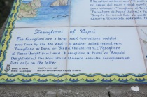 1.1465862400.capri---the-facts-of-faraglioni