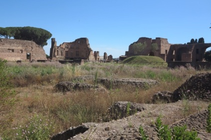 1.1466231223.rome---ruins-on-palatine-hill